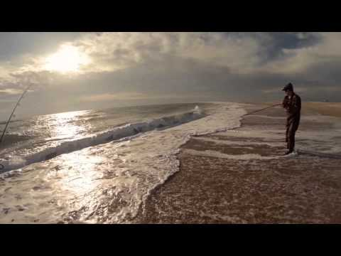 Outer banks surf fishing fall trip davis island cape for Outer banks surf fishing tips