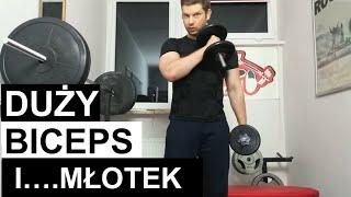 Wykuj duży biceps młotkiem! I ile razy w tygodniu ćwiczyć? 2017 Video