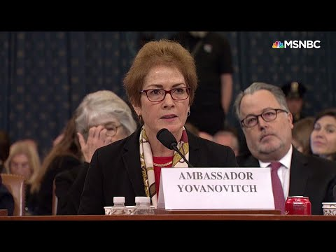 During moving testimony, ousted diplomat gets twitter intimidation from Trump - Day That Was | MSNBC