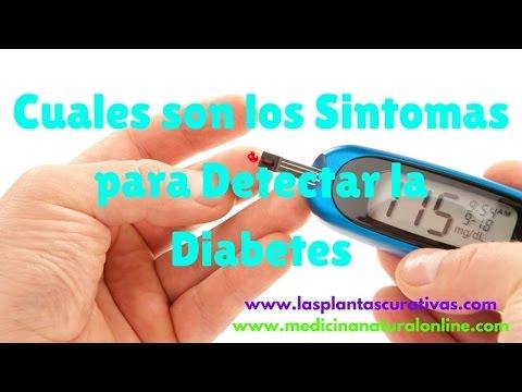 cuales-son-los-sintomas-para-detectar-la-diabetes---posibles-sospechas