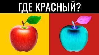 ТОЛЬКО ГЕНИЙ ПРОЙДЕТ ЭТОТ ТЕСТ ЗА 20 СЕКУНД (95% фейлят) / БУДЬ В КУРСЕ TV