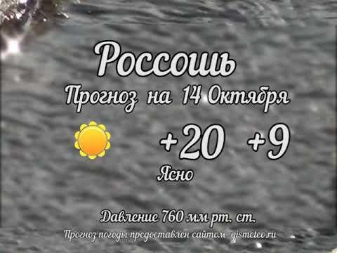 Прогноз погоды на 14.10.2019, Блокнот Россоши