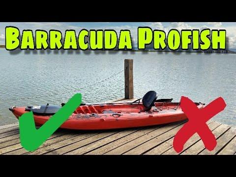 Review Barracuda Profish 2.1- Lontras