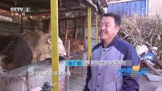 《消费主张》 20191206 原产地访价格:牛肉价格未来走势如何?  CCTV财经
