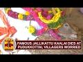 Famous 'Jallikattu Kaalai' dies at Pudukottai, Villagers worried | Thanthi TV