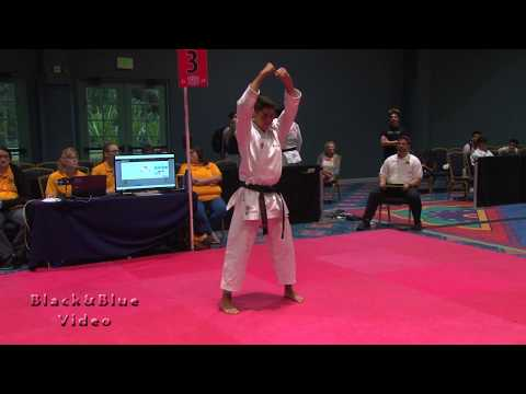 Traditional Kata  2 From The 2019 U S Open World Martial Arts Championships