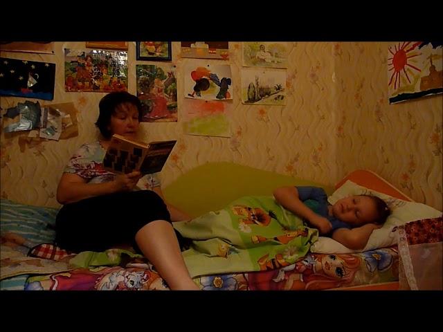 Изображение предпросмотра прочтения – НатальяЛанг читает произведение «Тайное становится явным» В.Ю.Драгунского