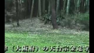 桜門の前には、史蹟松平定綱及び一統之墓所[県史跡]と記された標柱が...