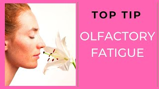Top Tips   Olfactory Fatigue 25