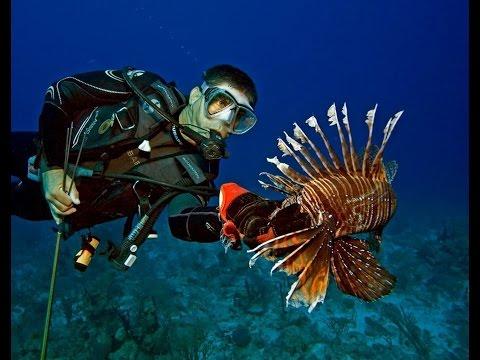 Episode 3: Fisheries: Prey and Predator, Oct. 23, 2014