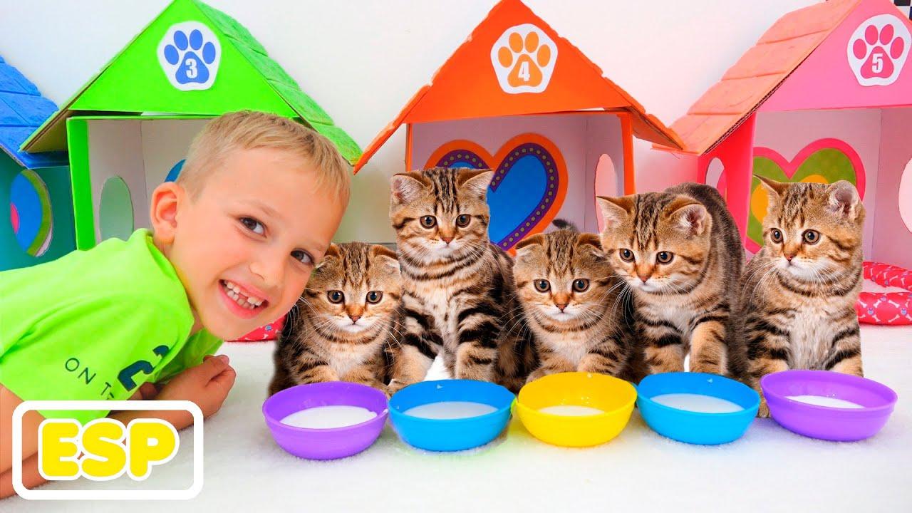 Vlad y Niki jugar con los gatitos