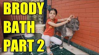 Bathing My Dog Brody   Family and Dog Vlog Video   Harpreet SDC