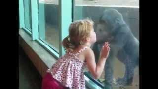 Дети и животные в зоопарке.