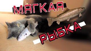 Мягкая Игрушка - Рыбка для Кота с AliExpress