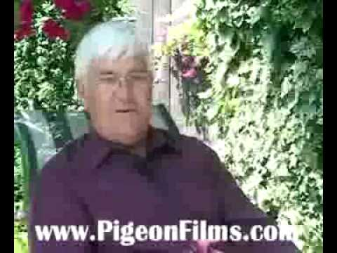 ª» Free Watch Pigeon Racing:  Secrets of Champions II