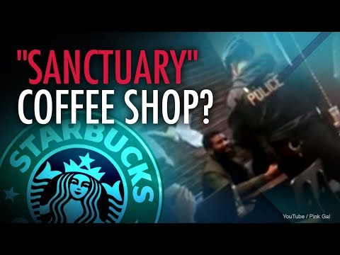 "Starbucks turns into ""mini sanctuary city"" overnight   David Menzies"