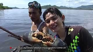 Berburu Kepiting Bakau | JEJAK PETUALANG