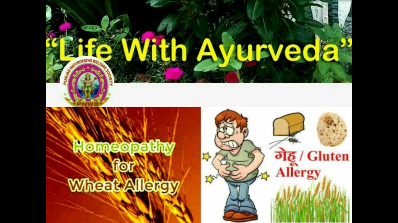 Wheat Allergy Symptoms Treatment In Homoeopathy
