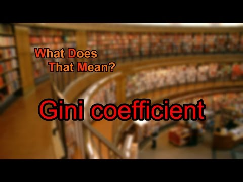 What does Gini coefficient mean?
