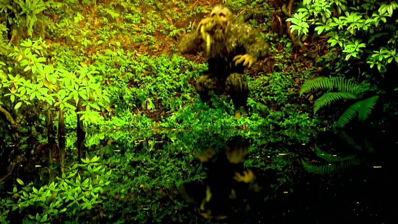 searching for sasquatch by - photo #41