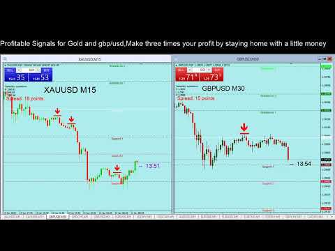 Forex gold signals free