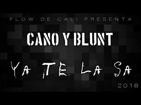 musica de cano y blunt mp3xd