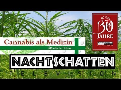 Praxis Psychedelik: Schwitzhütte / Cannabis-Medizin-Petition | Nachtschatten Television (18)