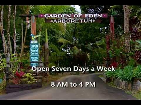 Maui Garden Of Eden Arboretum U0026 Botanical Garden