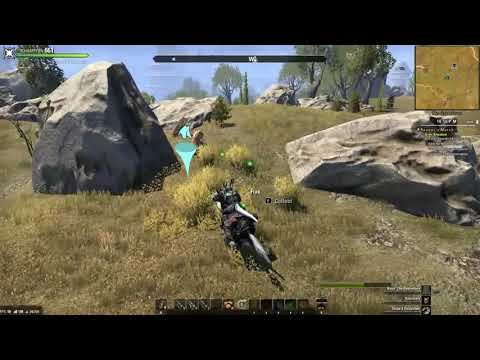 The Tamriel Marketplace: The Gold Coast 40K+ Hourly Farming Video