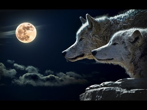 Myths of the Norsemen 6: The Wolves Skoll and Hati