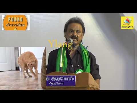 DMK Stalin Troll | மேடை உளறல் | Vaiko | Durai Murugan | கண்ணீர்