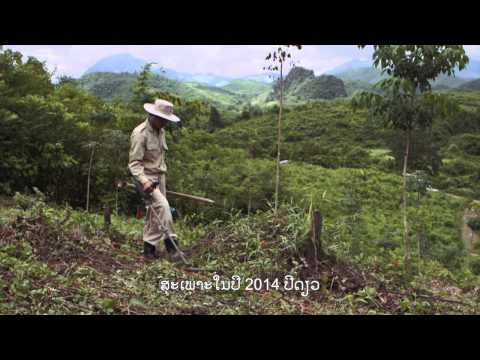 Clearing the Way - UXO Clearance in Lao PDR