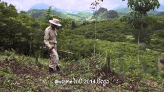 clearing the way uxo clearance in lao pdr