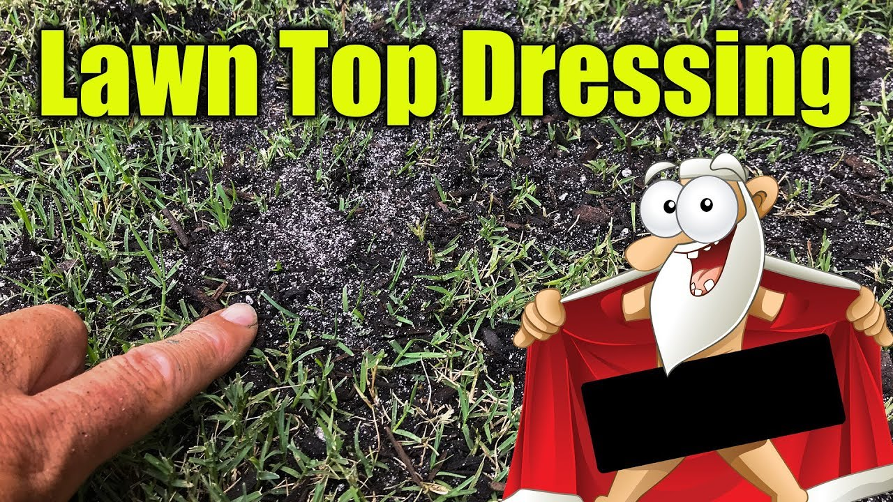 ddb6f846a3 Top Dressing for Lawns - YouTube