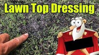 Top Dressing for Lawns