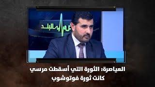 العياصرة: الثورة التي أسقطت مرسي كانت ثورة  فوتوشوب - نبض البلد