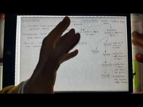 come usare il vocabolario from YouTube · Duration:  4 minutes 15 seconds