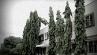 Viswha Vinuthana-DMS Mysore