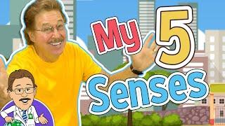 My 5 Senses   5 Senses Song   Jack Hartmann