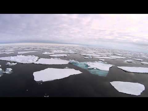 Sailing in the Arctic Ocean onboard  National Geographic Explorer above 80 Latitude