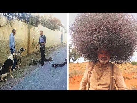 Fotos, die in einem Paralleluniversum aufgenommen wurden