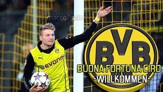 Ciro Immobile - Welcome to Borussia Dortmund - All Goals 2013/14