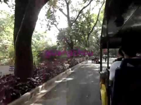 Guangzhou / Yuexiu Park/ benimle Çin'i gezin Vlog
