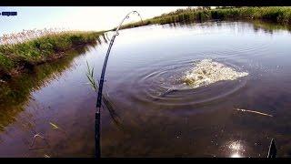 Ловля щуки. Разведка по щучьим местам. Ловля щуки в траве.  Pike fishing(Разведка активности щуки и окуня в это время года., 2015-05-15T05:36:10.000Z)