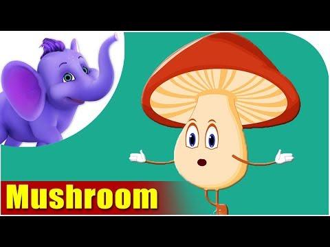 Mushroom - Vegetable Rhyme