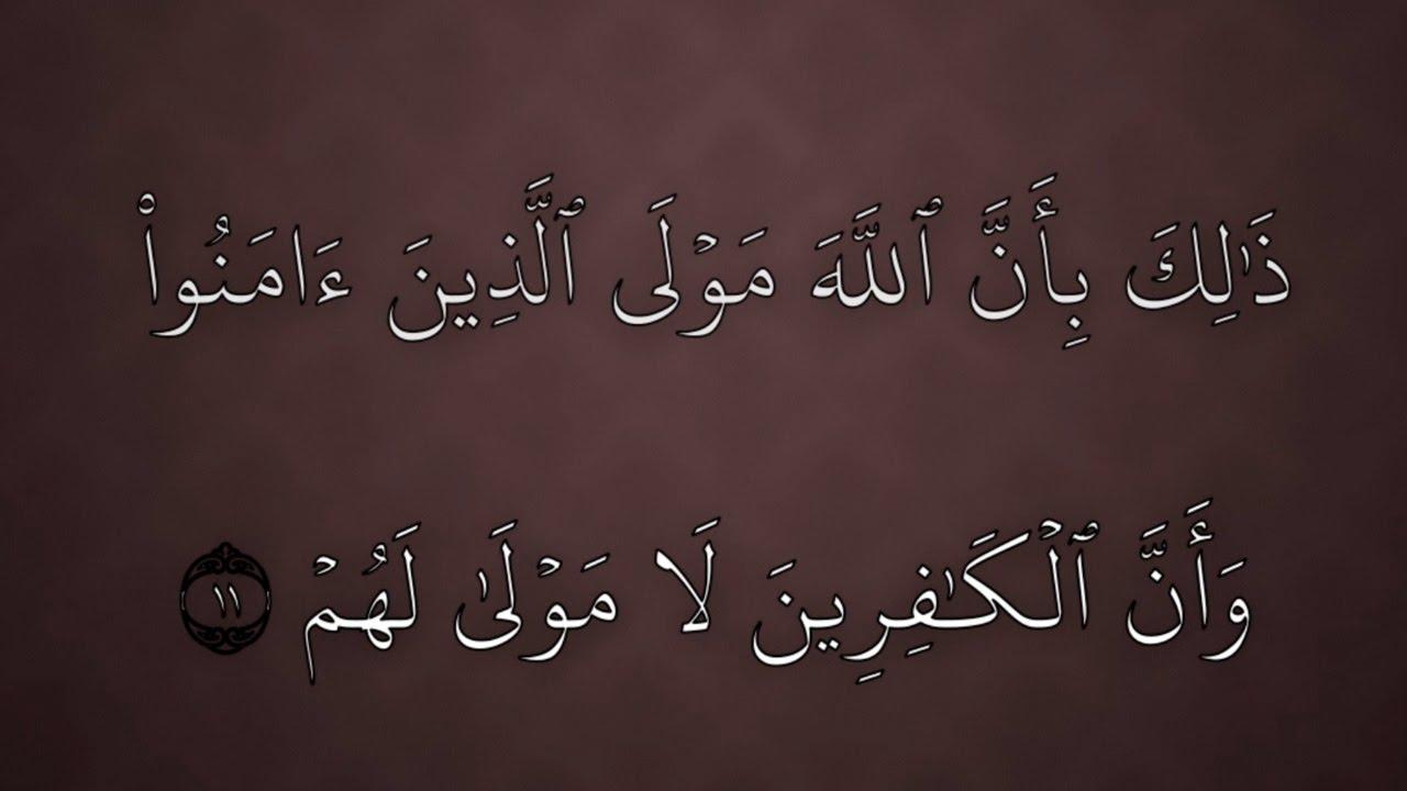 بداية سورة محمد بصوت الشيخ بندر بليلة