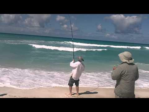 Mulloway beach fishing South Australia Tim Doyle