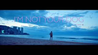Baxter Dury   I'm Not Your Dog Official Music Video