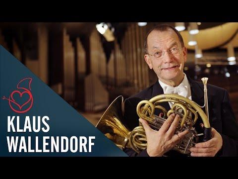 Klaus Wallendorf live in Berlin on Sarah´s Horn Hangouts