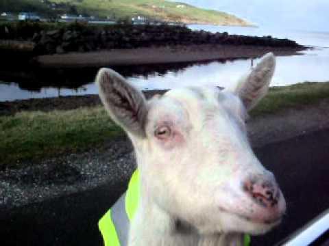 The Irish Road Worker...